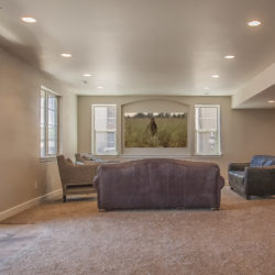 basement finishing denver